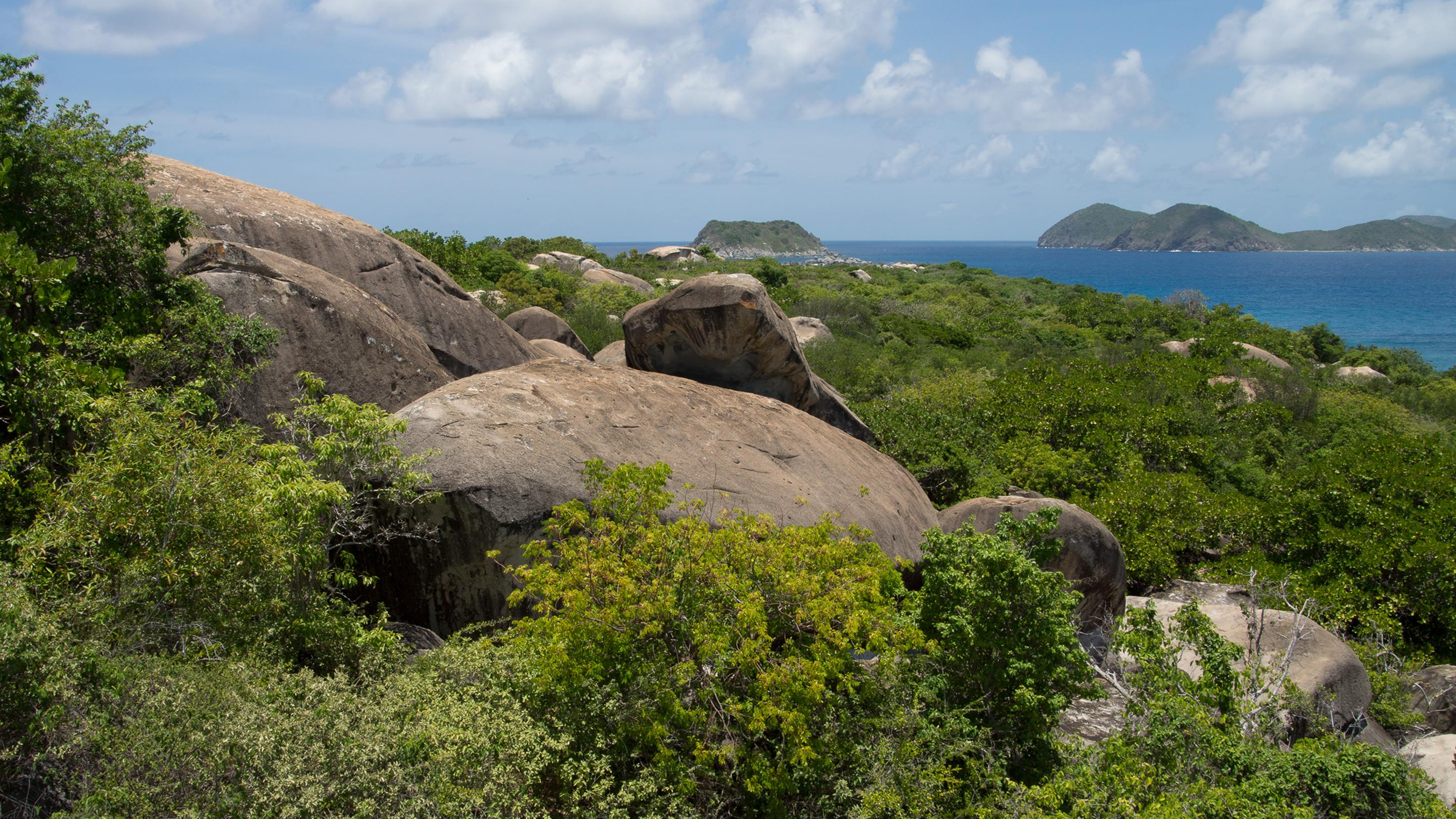 Tropical Important Plant Areas in the British Virgin Islands (BVI TIPAs)