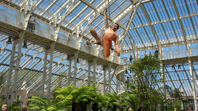 Cirque Bijou's Korri Singh-Aulakh in the Temperate House
