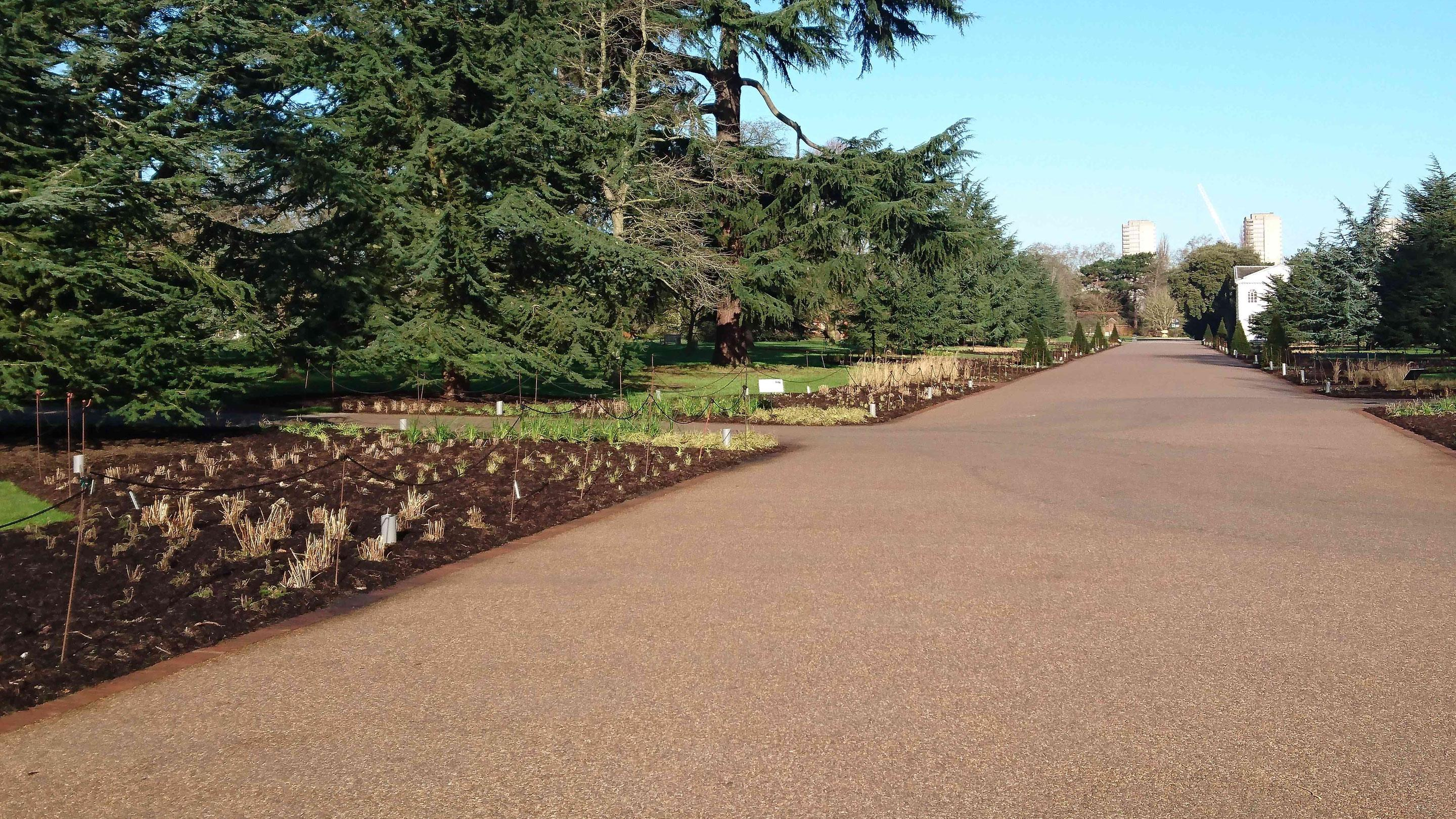 Preparing the Broadwalk Borders for planting