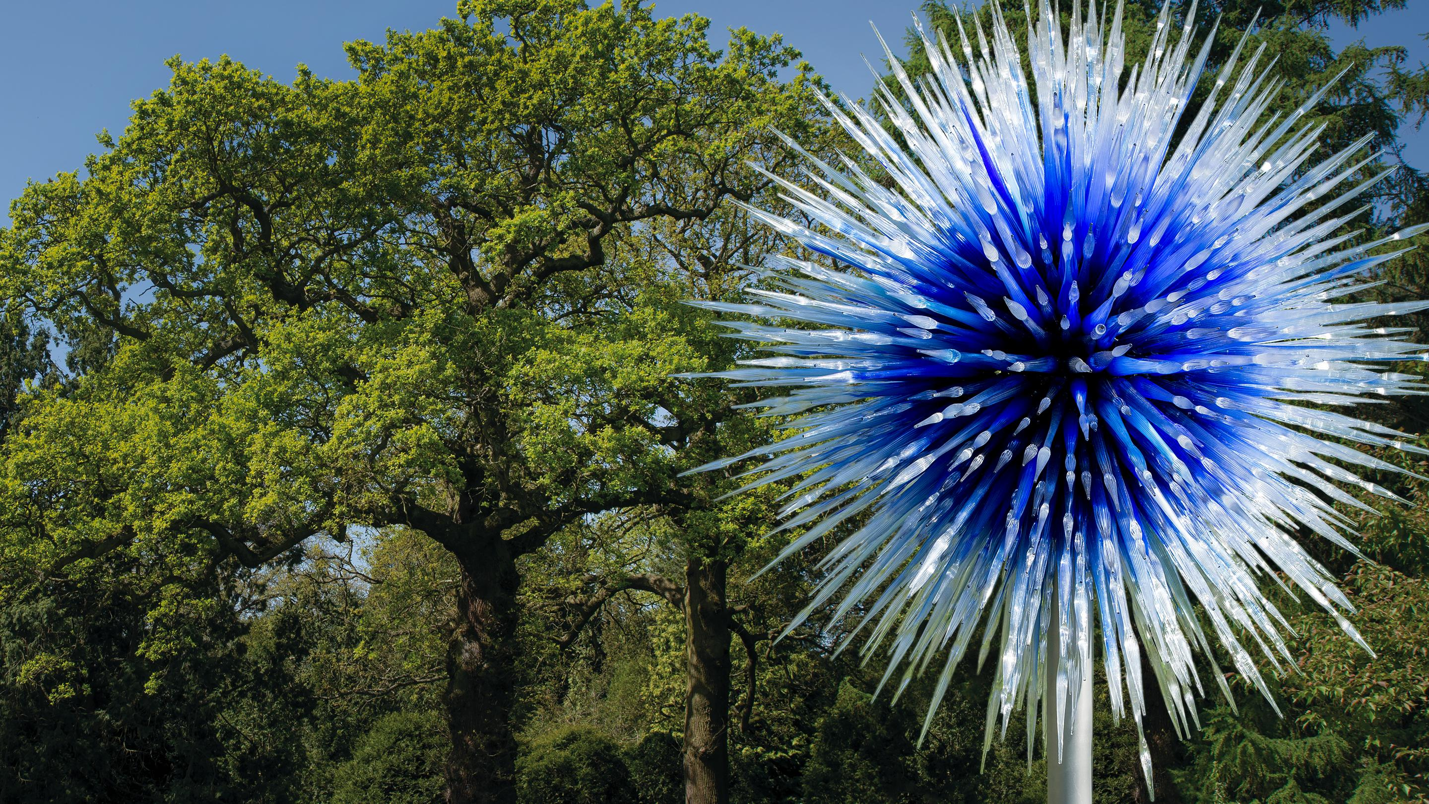 Dale Chihuly, Sapphire Star, 2010 final © Chihuly Studio
