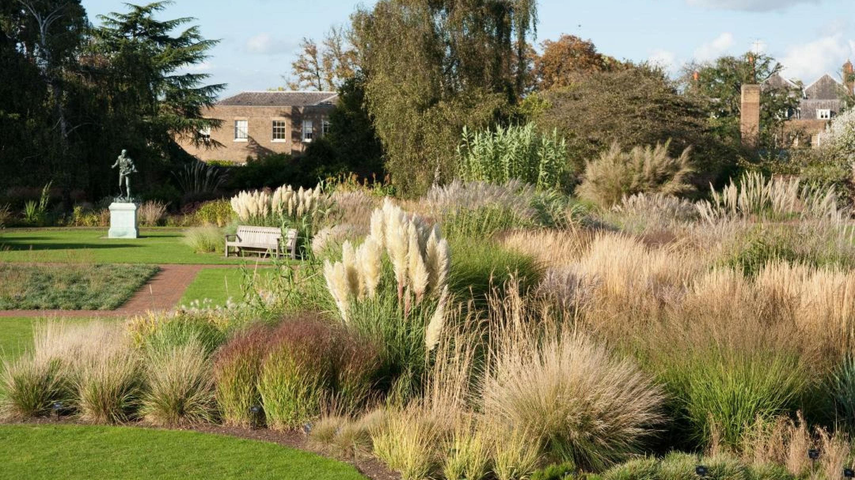 The Grass Garden