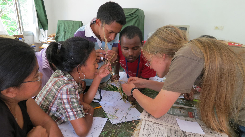 Grass workshop in Tana, Madagascar