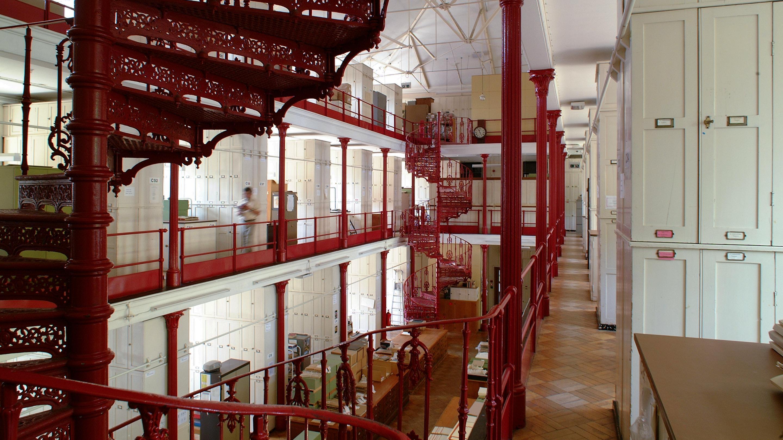 Inside Kew's Herbarium
