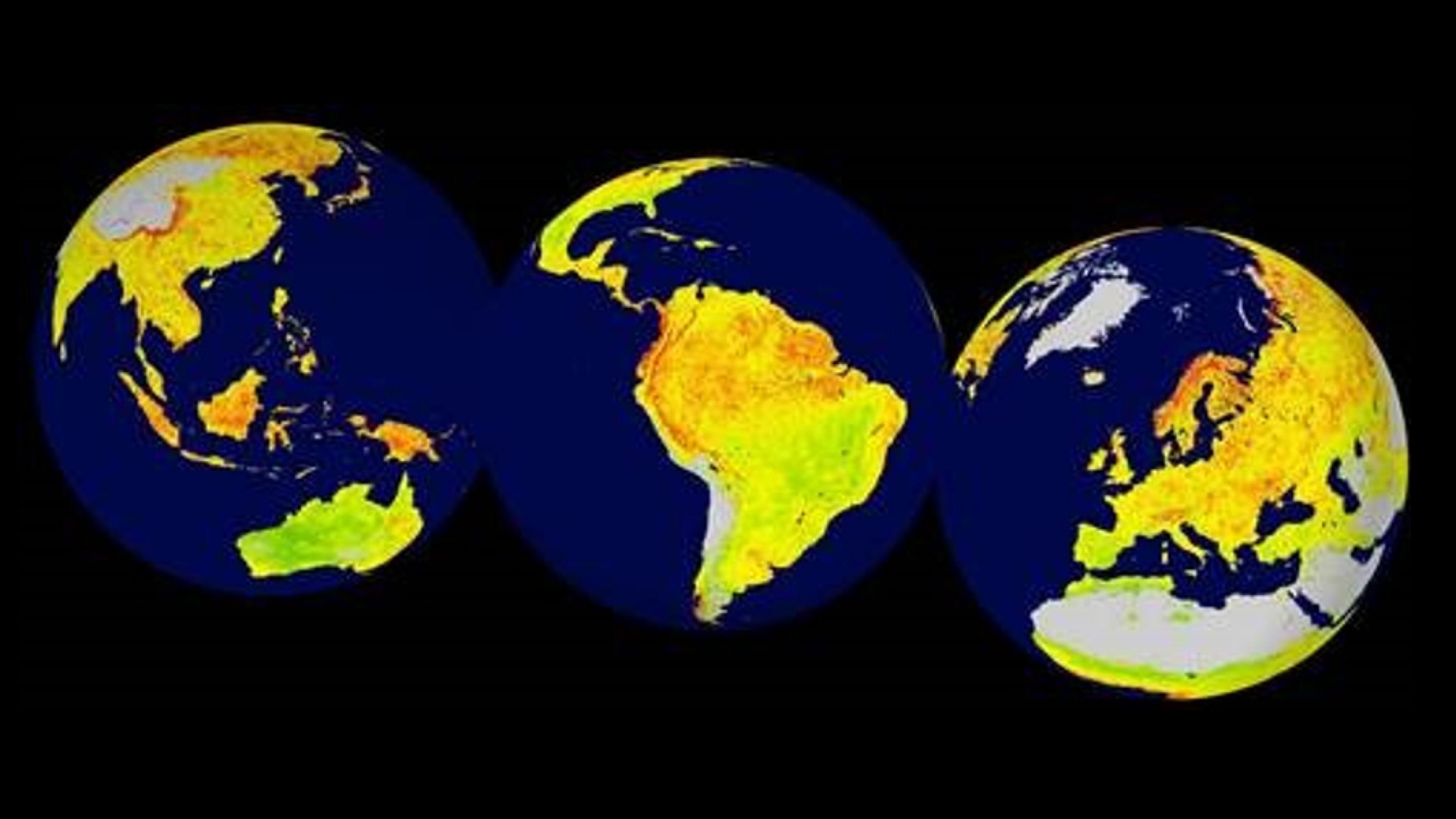 Image showing a global snapshot of the Vegetation Sensitivity Index (VSI), a new indicator of vegetation sensitivity to climate variability using satellite data between 2000-2013 at 5km resolution