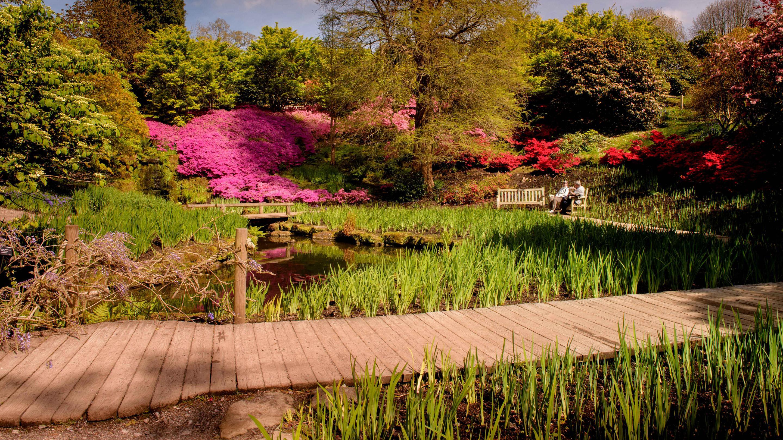 Iris Dell in spring (Image: Jim Holden)