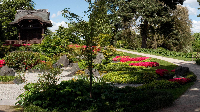 The Japanese Landscape At Kew