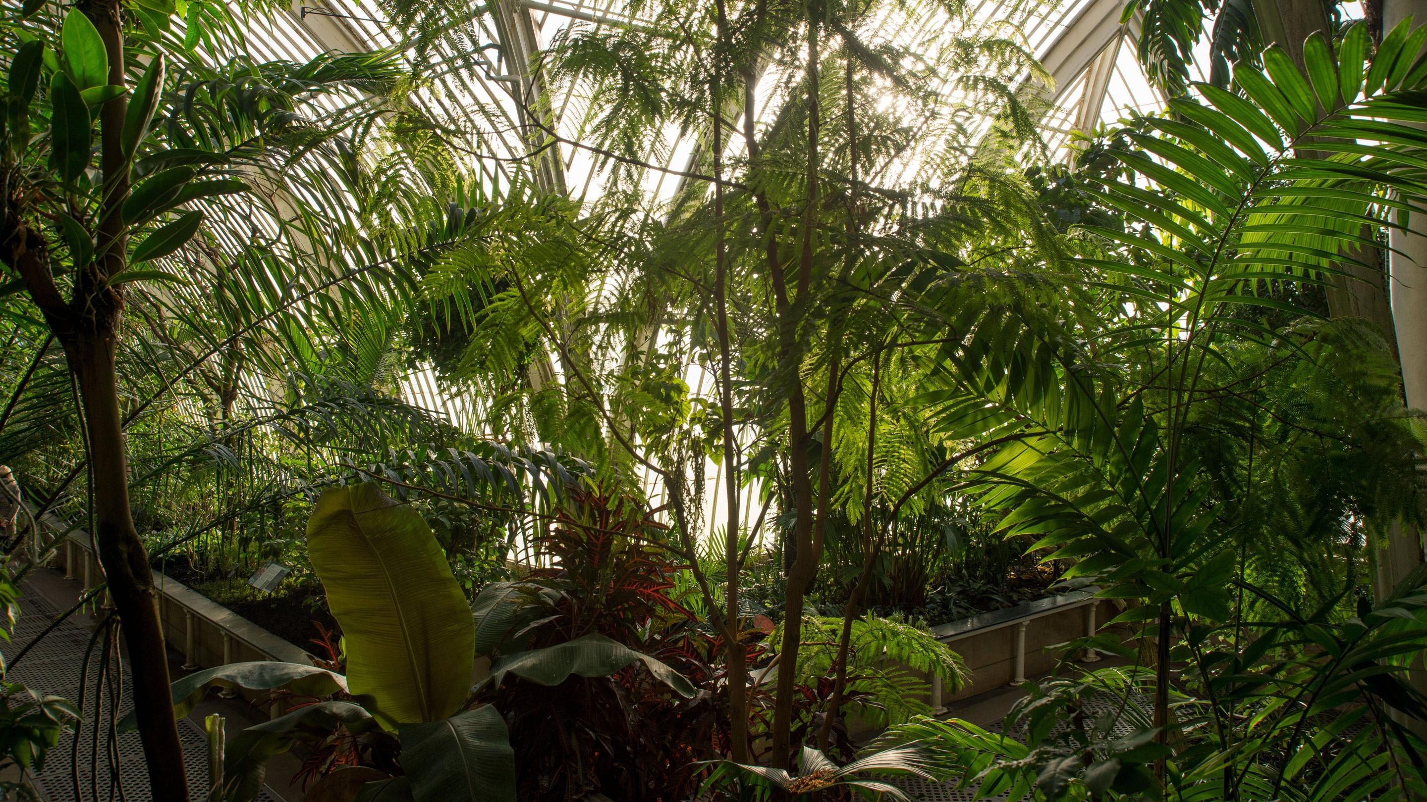 browse kew education sessions