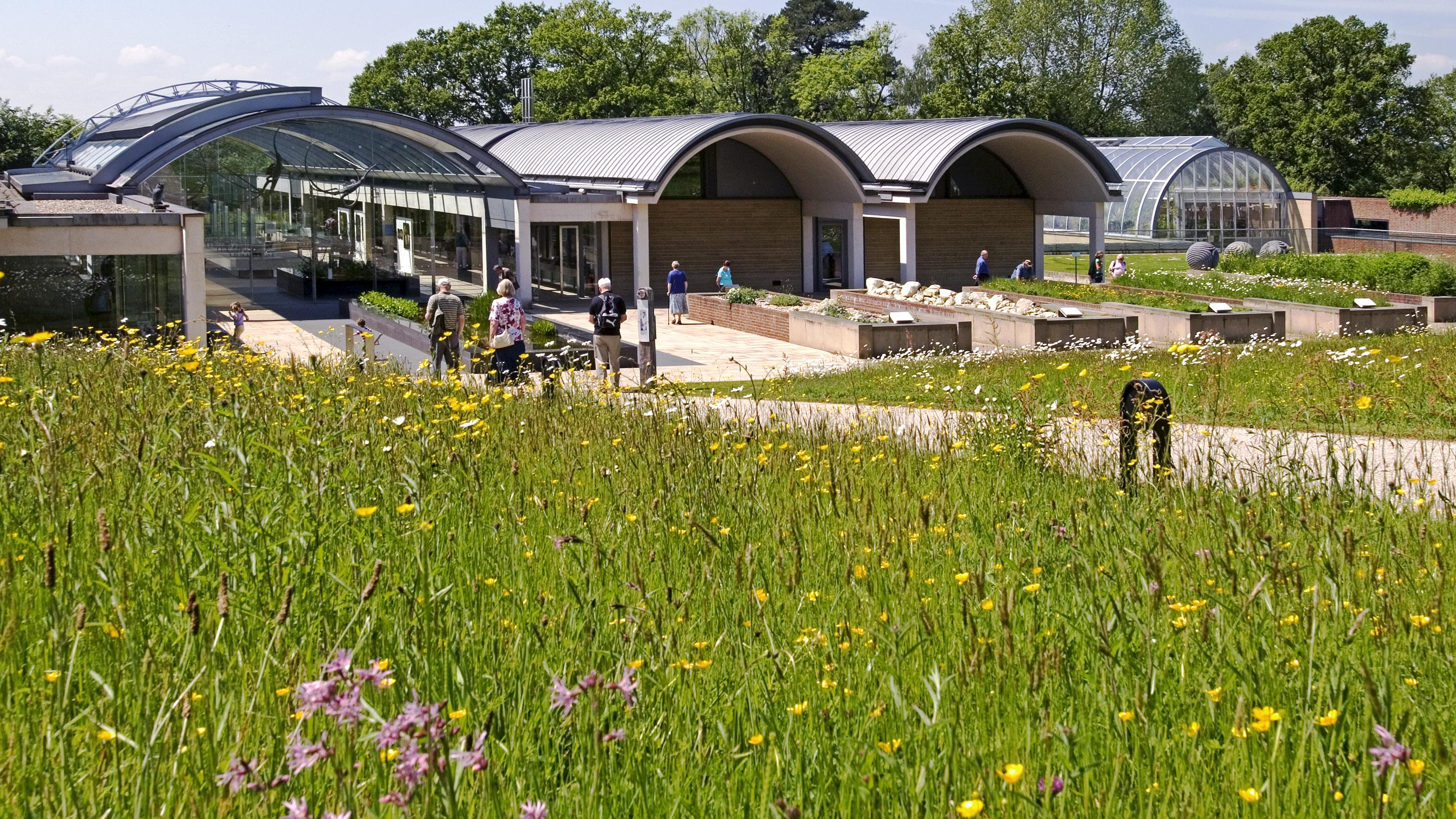 The Millennium Seed Bank