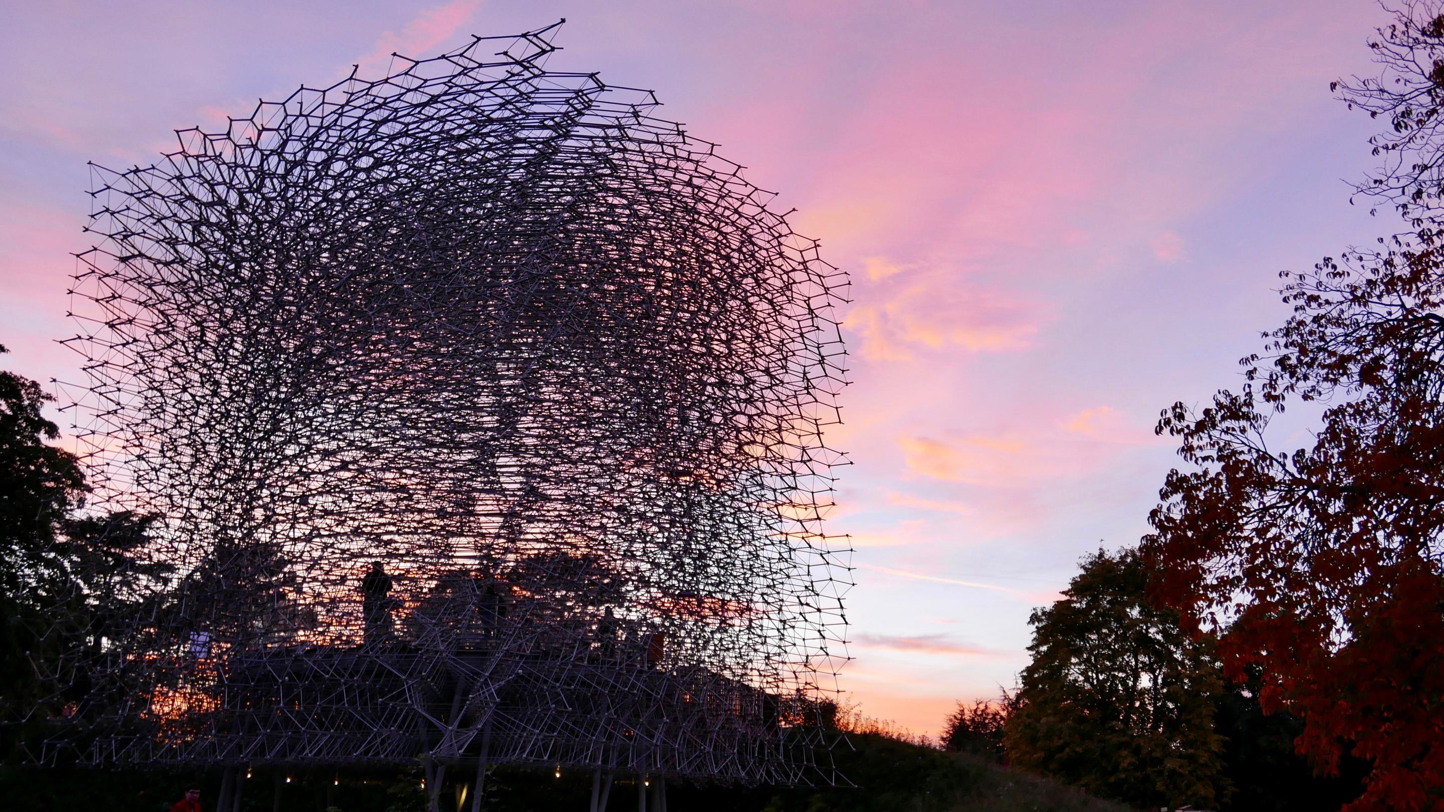 The Hive at sunset
