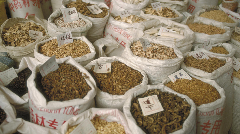 Medicinal plant market in Anguo, China
