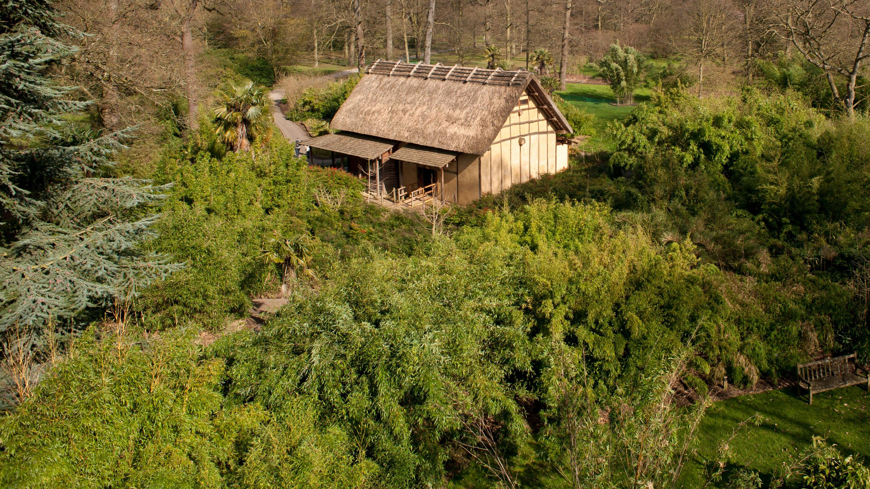 minka house and bamboo garden - Bamboo Garden