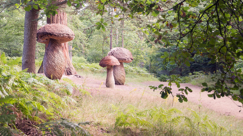 Mushroom sculptures at Wakehurst