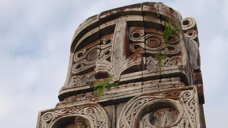 Indonesian New Guinea