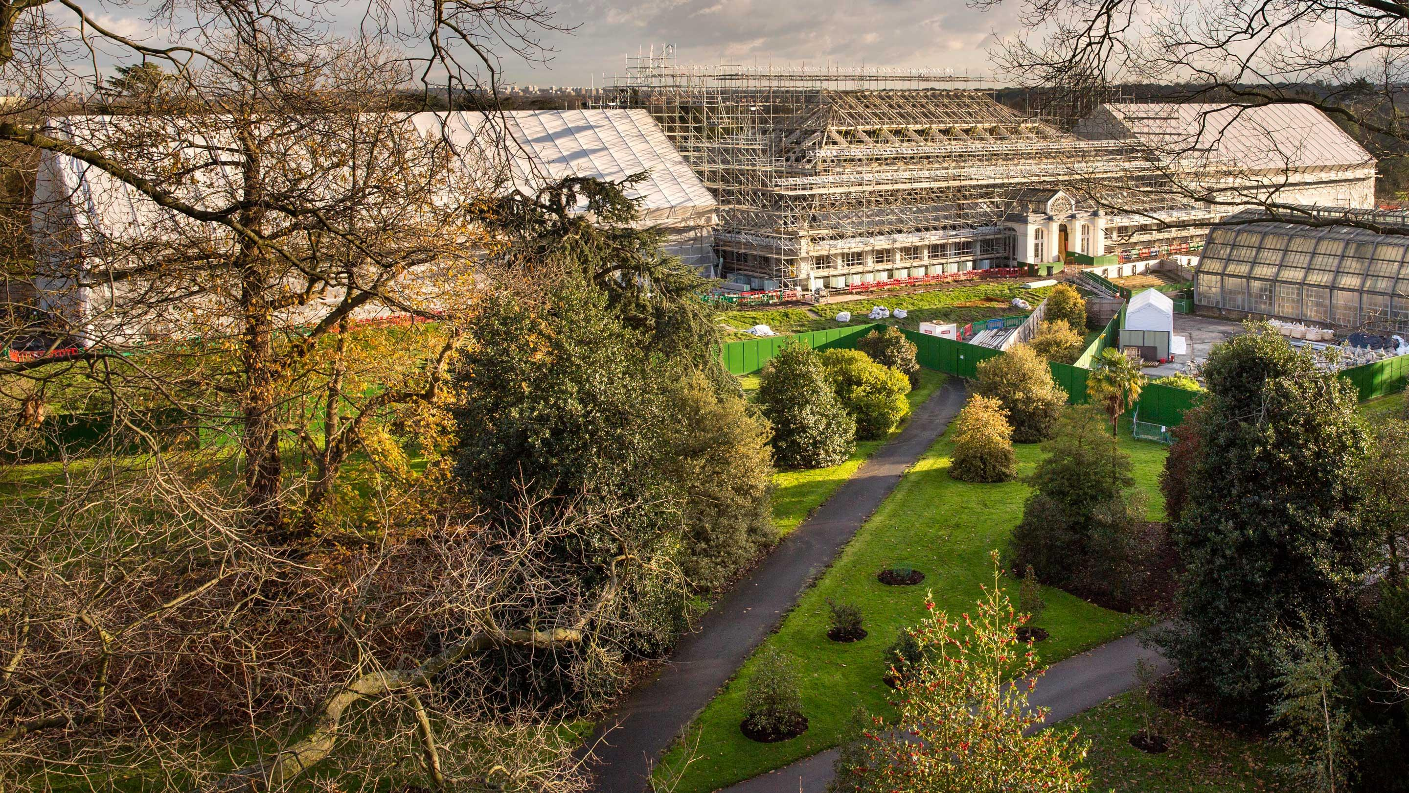 View of the Temperate House under restoration