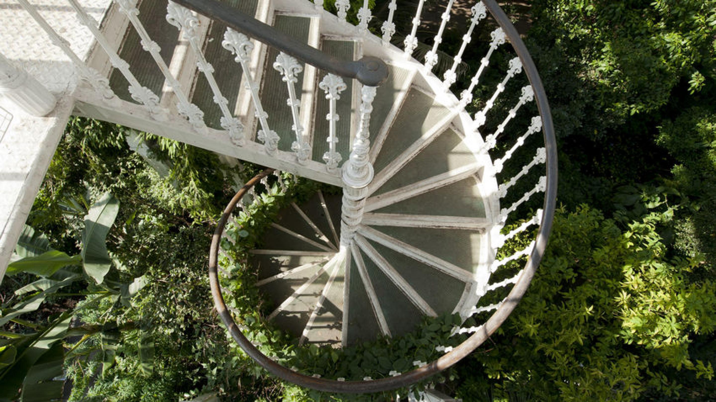 Temperate House staircase © RGB Kew