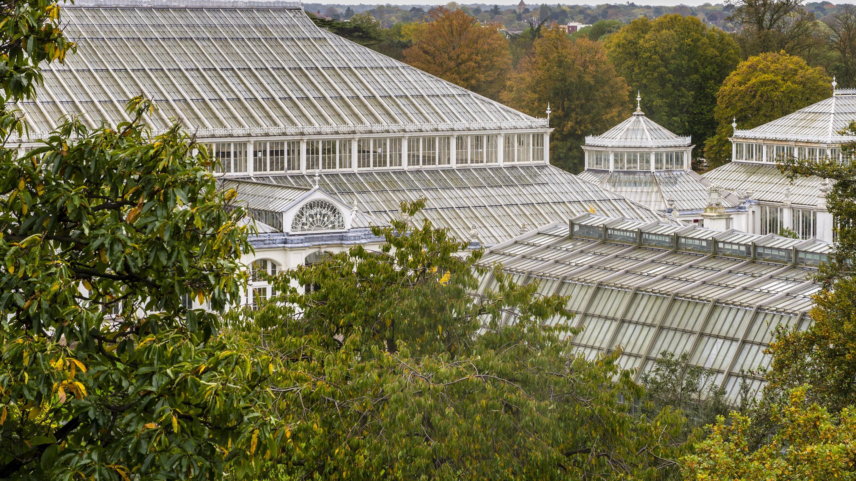 Incroyable Kew.org U003e ...