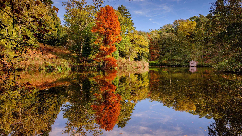 Wakehurst lake in autumn season