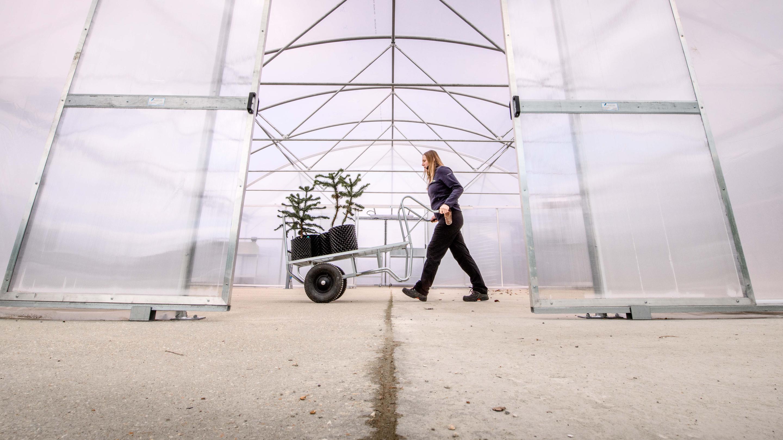 The nurseries at Wakehurst: Jim Holden