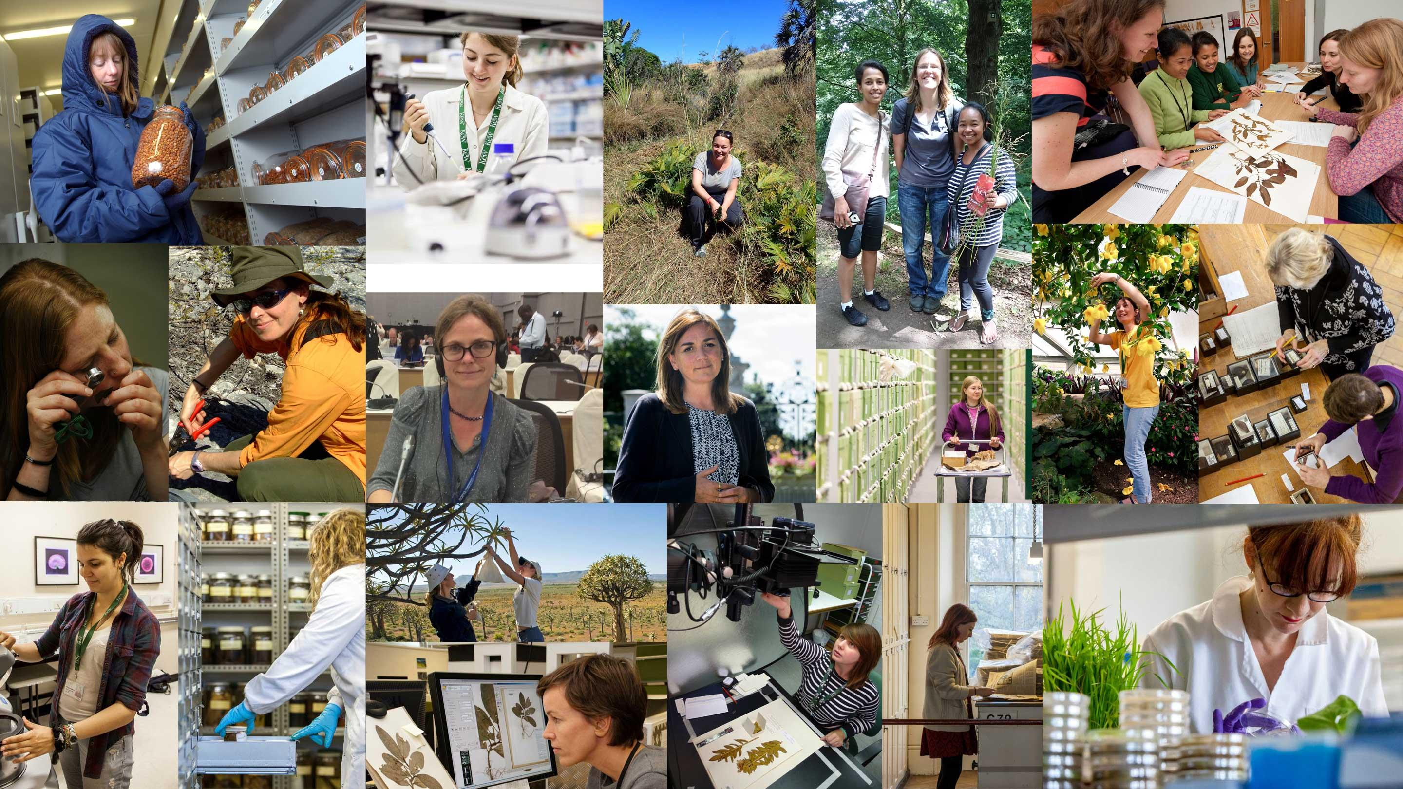 image showing some of Kew's female scientists