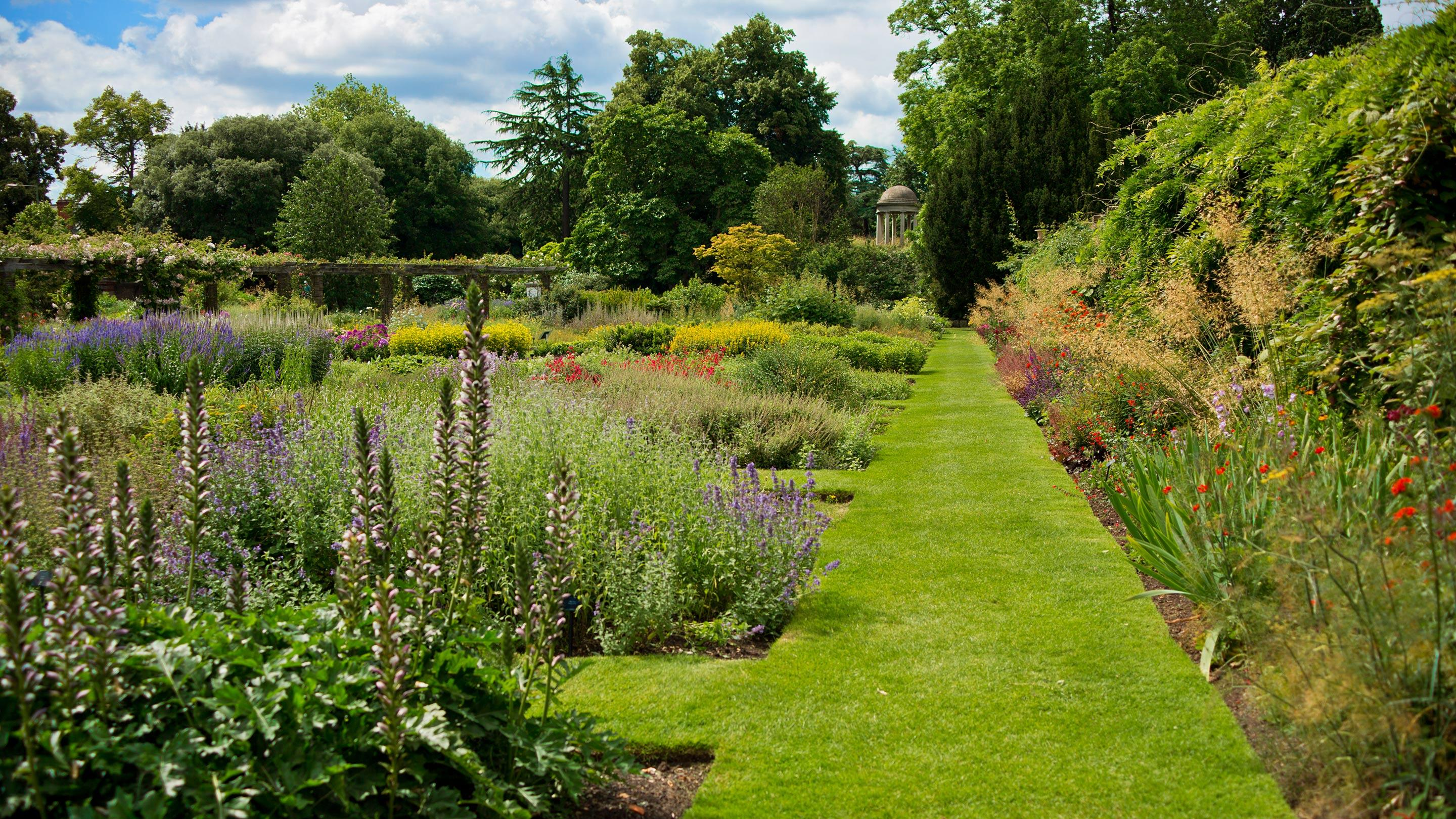 Plant Family Beds | Kew