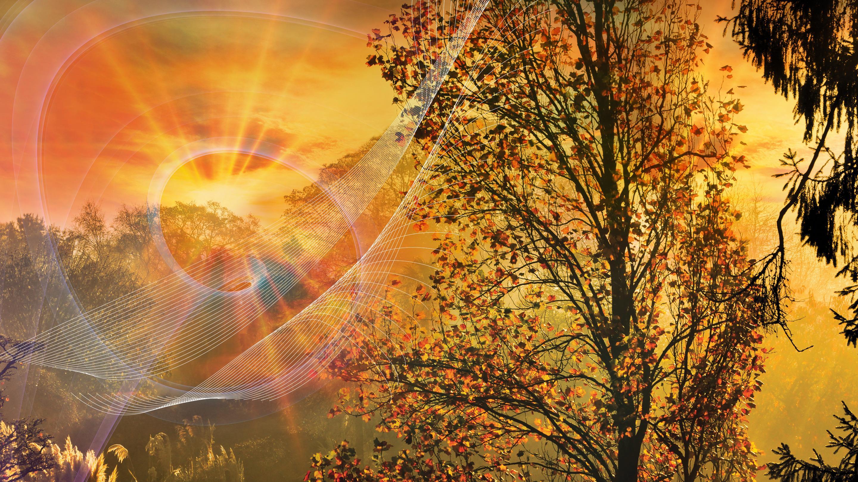 Seeking art in nature, experience Wakehurst in a new light