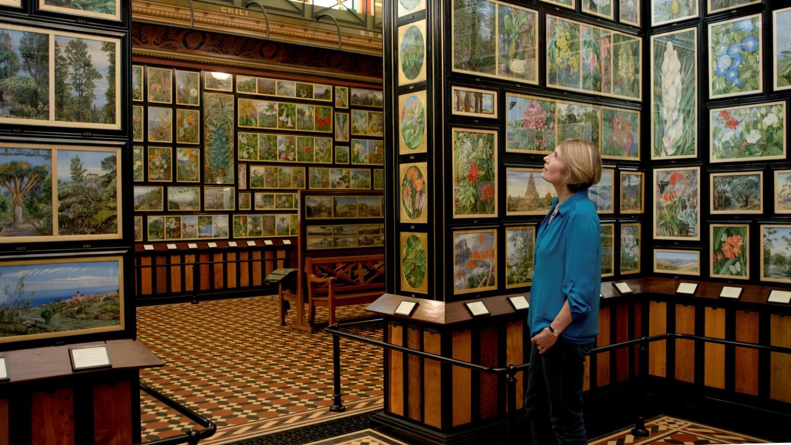A visitor admiring the collection in the Marianne North Gallery
