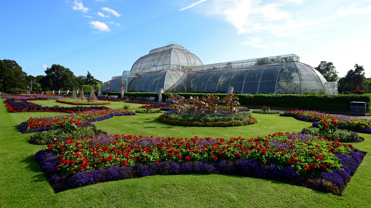 Exterior view of the Palm House in bright sunlight