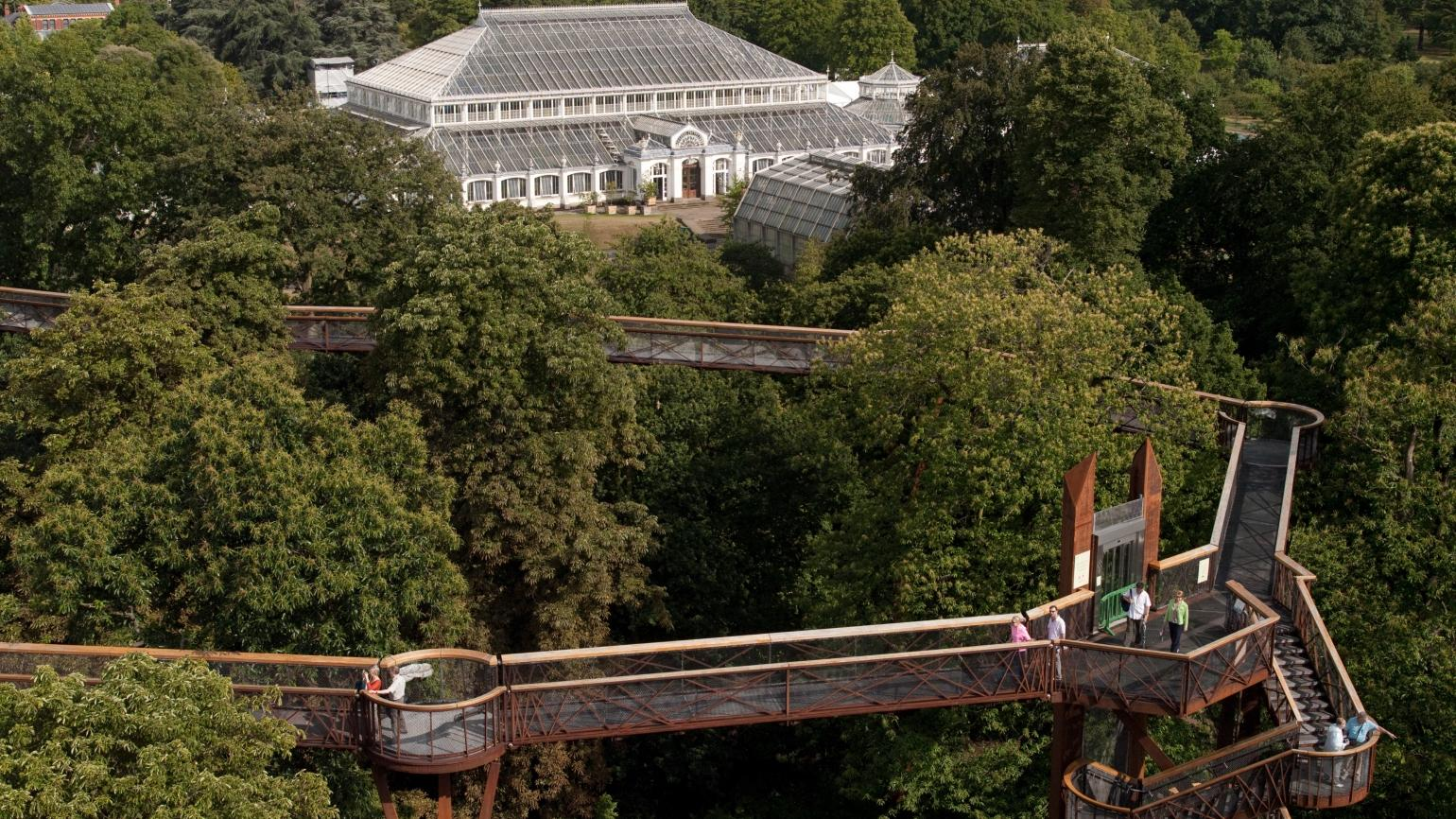 An aerial view of the Temperate House and the Treetop Walkway
