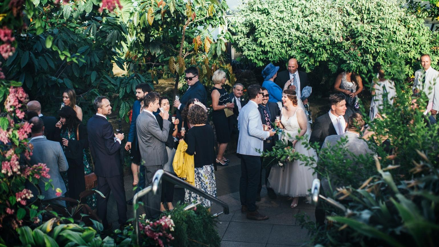 A drinks reception in the Princess of Wales Conservatory