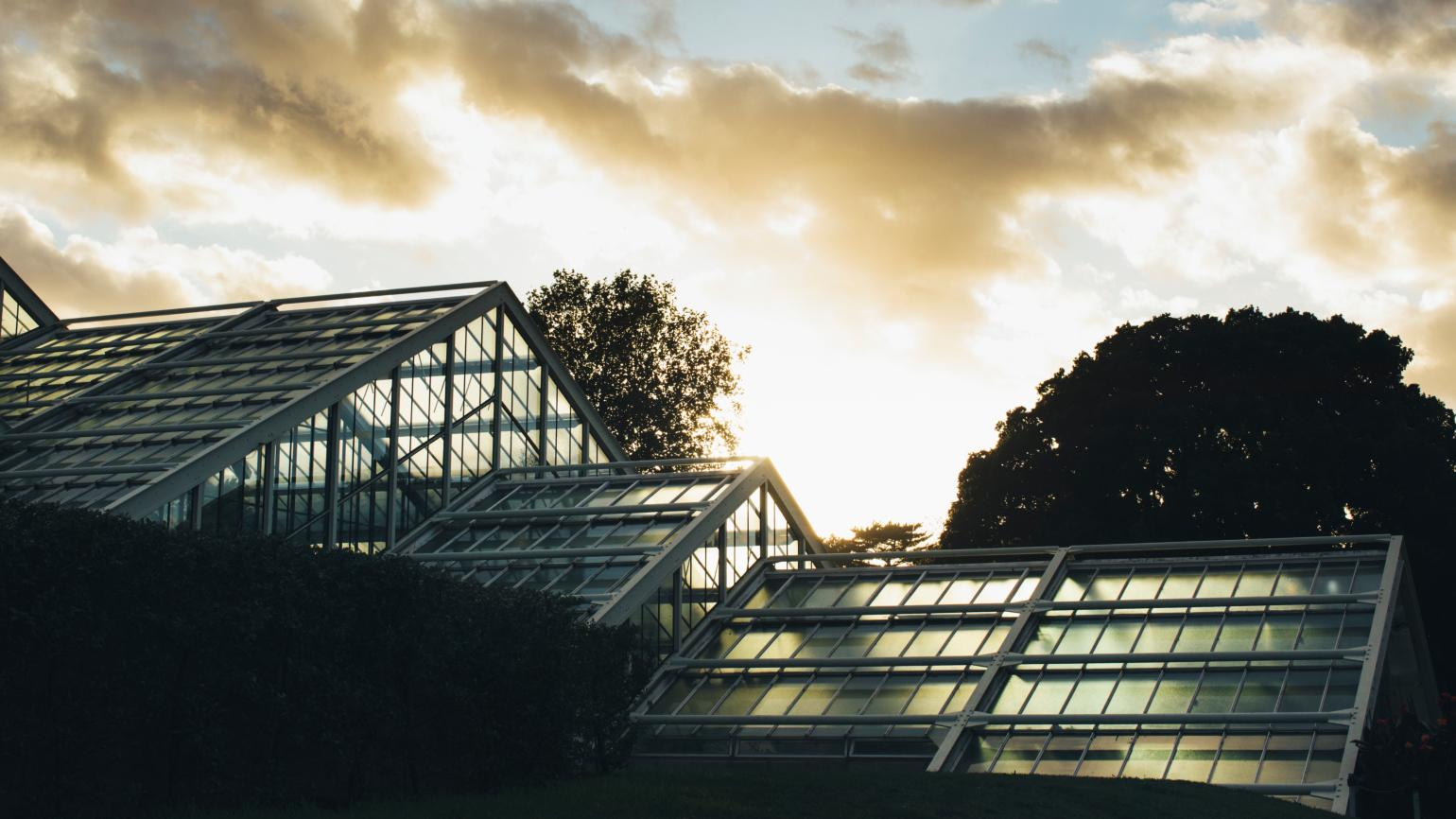 The Princess of Wales Conservatory at dusk