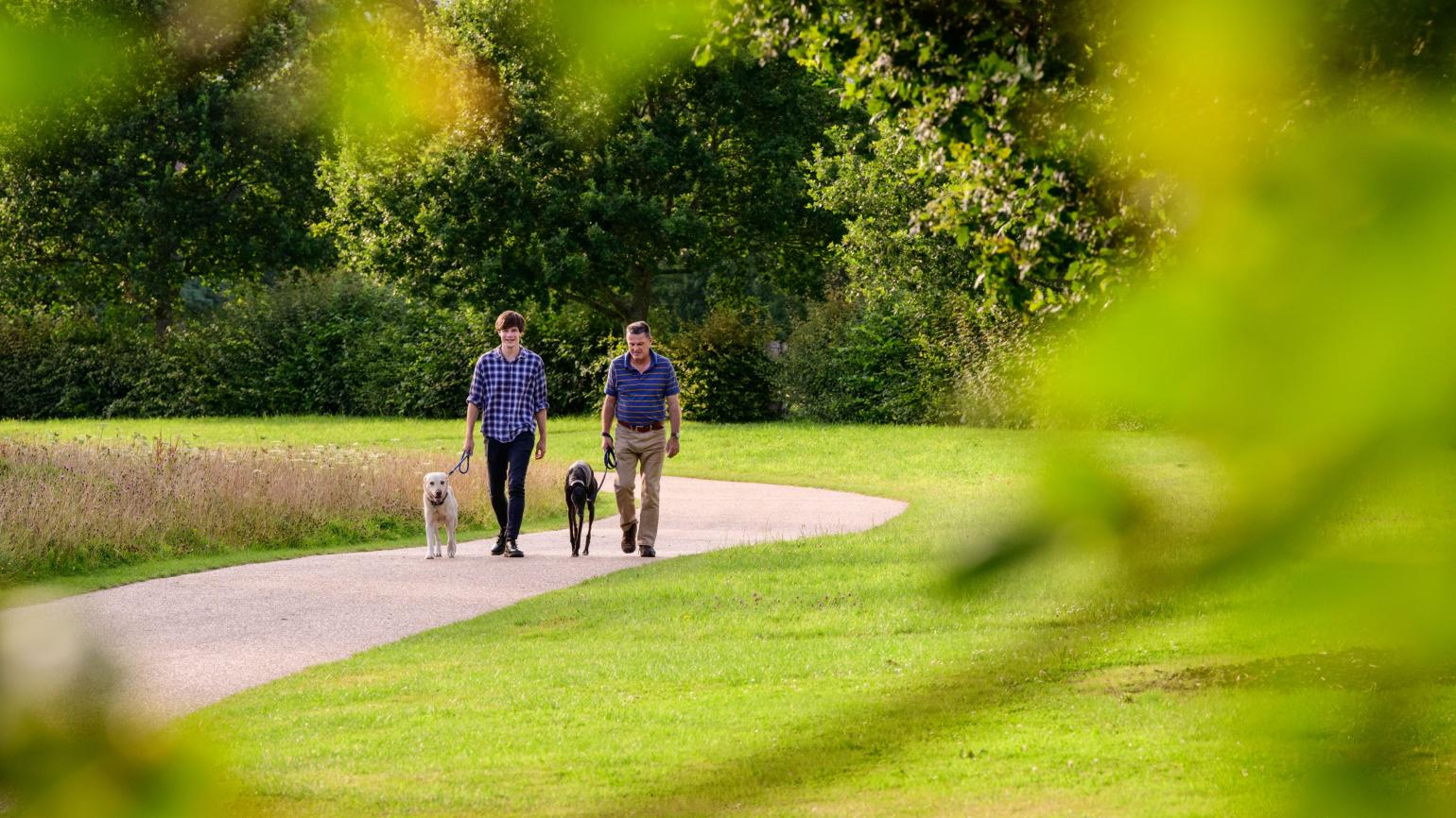 Dogs being walked by two men at Wakehurst