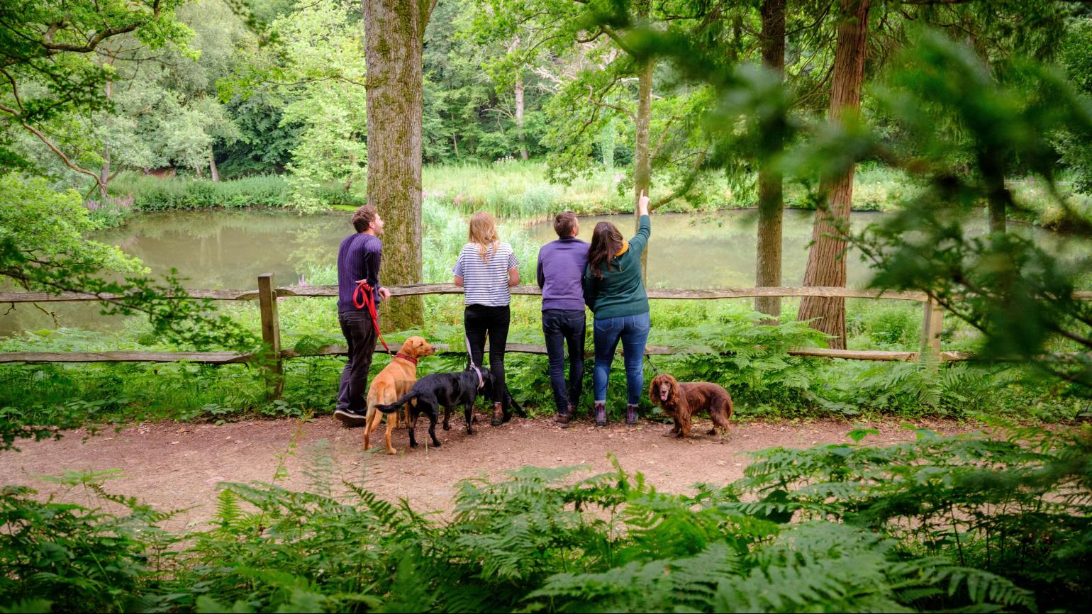 A group of people admire the view of Wakehurst whilst their dogs patiently sit next to them