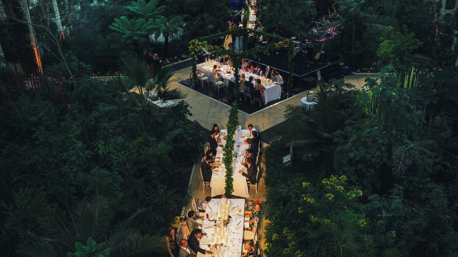 Temperate House, Luxury wedding