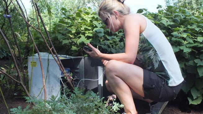Photo of Sarah Barlow controlling Rana remotely via a web interface