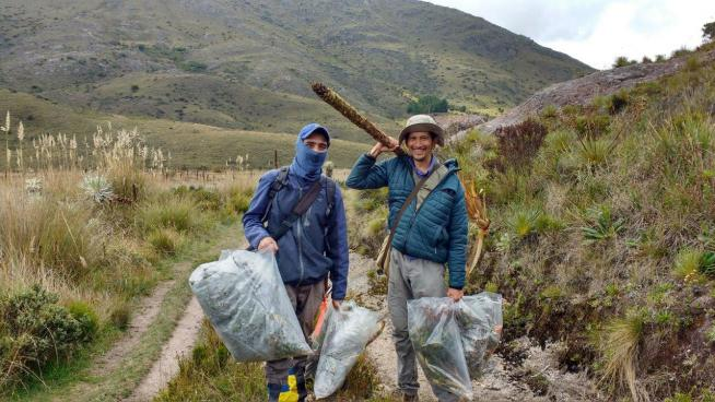 Image showing Carlos and Humberto seed collecting in Paramo la Rusia