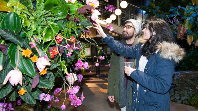 A couple exploring Orchid Festival - After Hours 2019