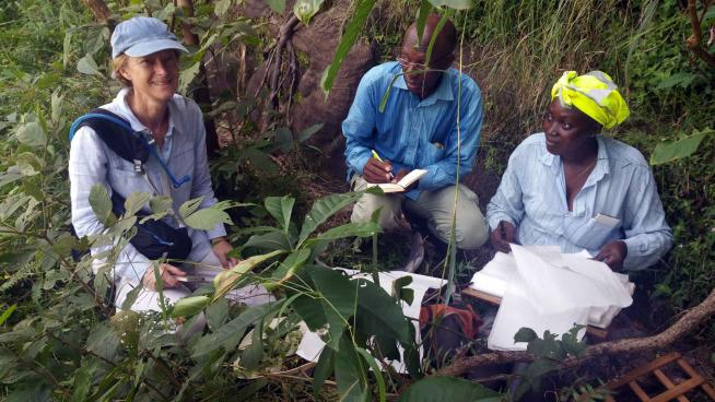 image showing One of our fieldwork leaders, Denise Molmou, (TIPAs Herbarium technician), Dr Sekou Magassouba (Director of National Herbarium of Guinea) and Catherine Inglehearn (British Ambassador) at Kindia October 2017