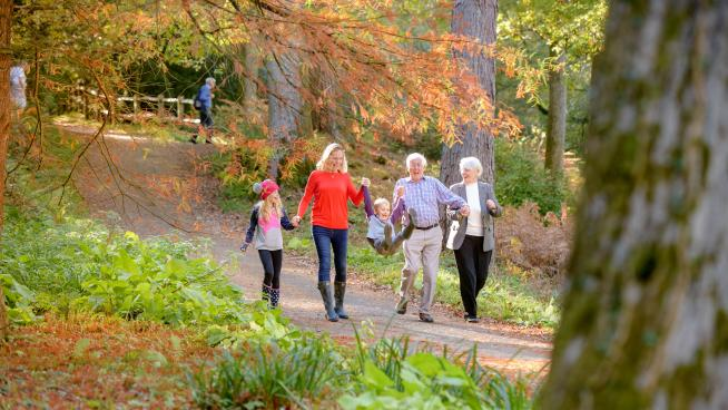 Family walking in Wakehurst woodland in autumn