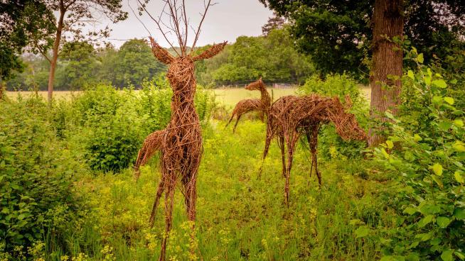 Deer sculptures made out of hazel stems