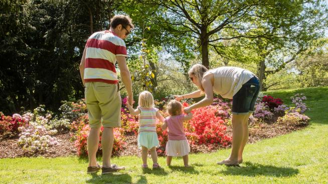 A family looking at the colourful blooms