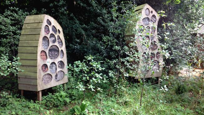 Bug hotels in the Natural Area