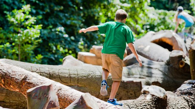 A child balancing on the log trail
