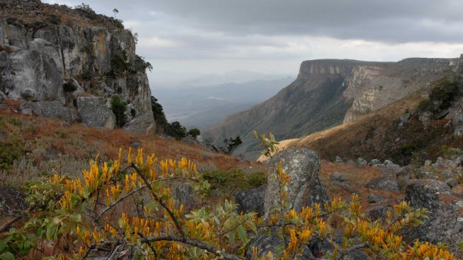 Image showing The Lubango Escarpment in SW Angola, an area notable for high levels of species endemism – over 100 plant species are known only from these mountains