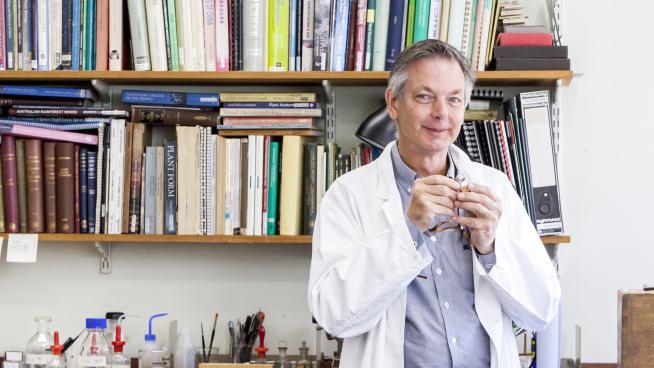 Kew Scientist