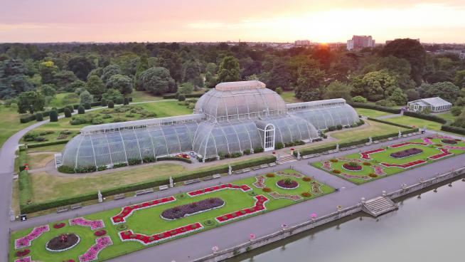Aerial view of the Palm House