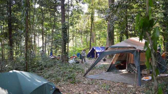 Image showing the fieldwork campsite on the margins of the Ribaue forests