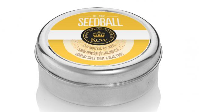 Kew Seedball Bee Mix