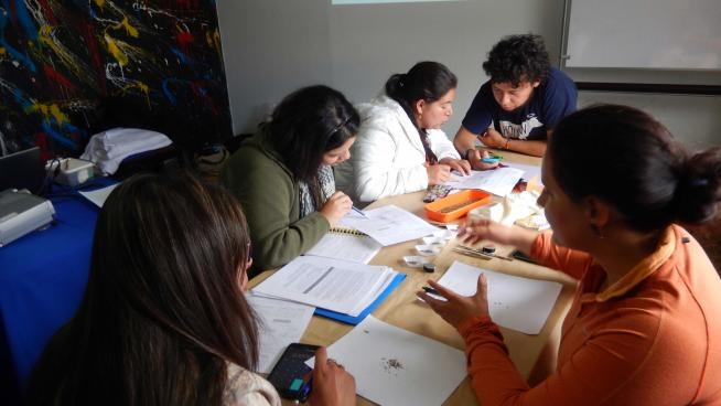 Image showing Students counting seeds during a practical session in the training course