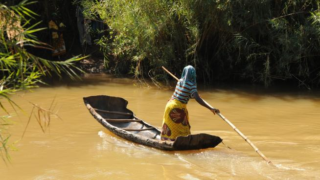 This lady transported the 30 expedition members, porters and their loads across the Mussapa River in her boat, constructed from one piece of bark from an Erythrophleum tree (Photo: M.Cheek).