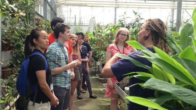 Tropical Nursery at Kew